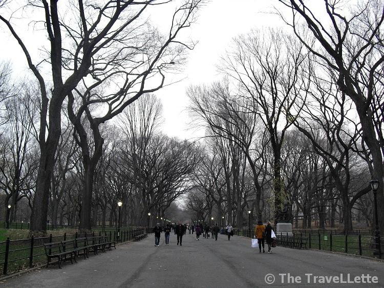 Central Park Winter New York