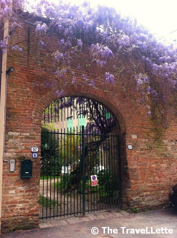 Garten Padua