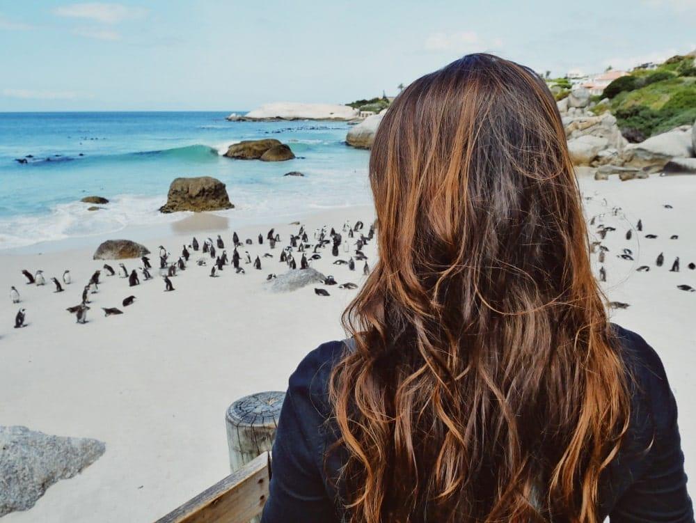 Kapstadt Reiseziele 2018