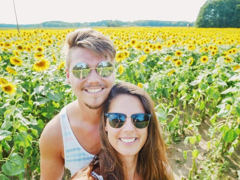 Paar-Sonnenblumenfeld