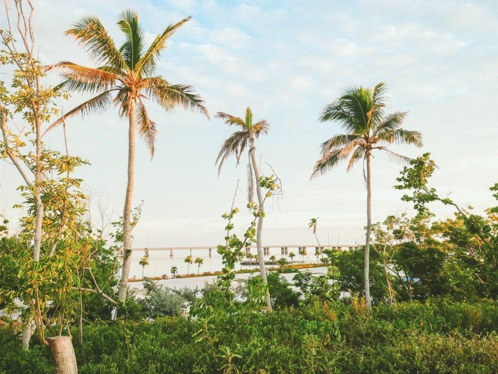 Florida-Keys-Bahia-Honda-State-Park
